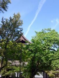 端午の節句 新緑の坐禅会 - MOTTAINAIクラフトあまた 京都たより