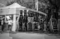 ベルギービールの幻影を見る透明人間 - Silver Oblivion