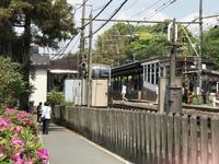 北鎌倉から鎌倉へ - 青山ぱせり日記