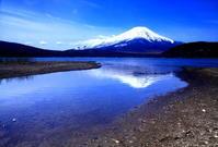 31年4月の富士(36)山中湖の富士 - 富士への散歩道 ~撮影記~