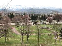 桜咲く  &  リスがいた  ♪ - 笑う門には福来たる