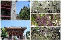 葛井寺へ - これから見る景色