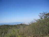 令和元年の初山登りは六甲山へ - 花の自由旋律