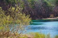 5月の日向水は藍よりも青く - 風の香に誘われて 風景のふぉと缶