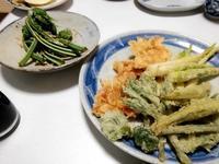 庄内春の食卓 - あけび Handmade