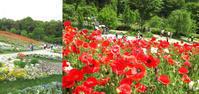 里山ガーデン - aiya diary