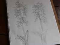 下絵制作 - 絵と庭