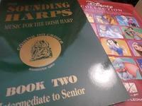 ディズニーの楽譜とアイリッシュ音楽の楽譜 - エール備忘録 -Ireland かわら版-