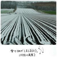 【한글/Korean】天気の単語(1) - ほかの国のコトバ ― 8言語つまみぐい