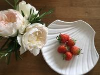 苺とちおとめと薔薇ボレロ - いととはり