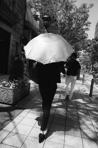 記録Streets of Kobe - Wayside Photos  ☆道端ふぉと☆