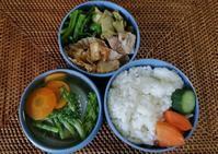 イタドリと鶏肉の炒め煮 - 好食好日
