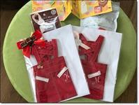 赤いジャンパースカート - わんころ日誌