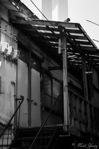 door - SCENE