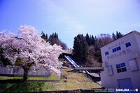 2019 SAKURA その15伊南川発電所 - WEEKEND EXTENDED LIFE-STYLE