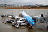 出張で福岡へ その1 展望デッキで撮影した飛行機(1) - 南の島の飛行機日記