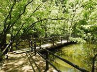 連休明けのセンター - 千葉県いすみ環境と文化のさとセンター