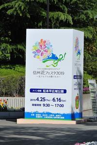 信州花フェスタ2019 - 味わう瞬間 (とき)
