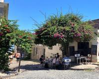 中南米の旅/33緑に囲まれた街コロニア@ウルグアイ - FK's Blog