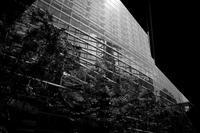 都市の景観 - 節操のない写真館
