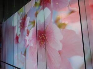 蜷川実花展-虚構と現実の間に- @いわき市立美術館。 -