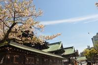大阪天満宮の桜と桃のケーキ♪ - a&kashの時間。