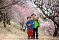 梅百花の香りの山へ「宝登山」山頂と梅百花園 - Full of LIFE