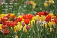 泉 - Poetry Garden 詩庭