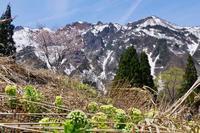 2019ダンダラロードその2 - 登山道の管理日記