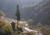 留守原の棚田 - Patrappi annex