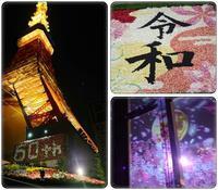 東京タワー夜桜night(3) - 気ままな食いしん坊日記2