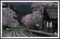 湯野上温泉駅の桜 - キルトとステッチ時々にゃんこ