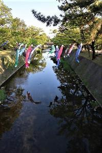 藤田八束の鉄道写真@大切にしたい子供の命、日本は今子供たちに将来の幸せを用意できるのか、子供たちのためにどんな努力をしているのか - 藤田八束の日記