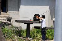 浜松市動物園2019年5月4日その2 - お散歩ふぉと2