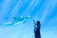 名古屋港水族館クリスマスアクアリウムコンサート2018動画をアップしました。 - 愛知・名古屋を中心に活動する女性ギタリストせきともこのブログ