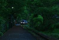 新緑の朝 - ゆる鉄旅情