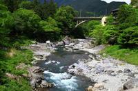 新緑の御岳渓谷を歩く - お散歩写真     O-edo line