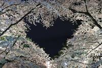 2019 東北撮影遠征-秋田・青森- - さんたの富士山と癒しの射心館