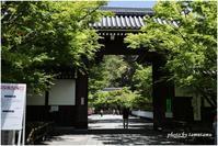 そうだ京都へ行こう。① - 今日のいちまい