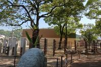 徳山動物園ゾウ舎オープン - どうぶつたちと私