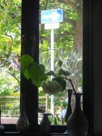 5月11日 - リラ喫茶店