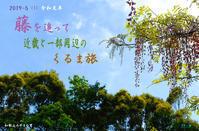 令和元年(1)藤を追って近畿と一部周辺のくるま旅 (和歌山) - 日本全国くるま旅