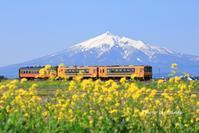 2019 東北撮影遠征-青森・芦野公園no2- - さんたの富士山と癒しの射心館