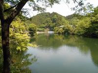 2019年5月12日鎌北湖 - バクバク!ヘラブナ釣行記