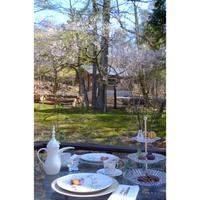 富士桜とお茶時間 - カエルのバヴァルダージュな時間