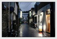 奄美大島-6 - Camellia-shige Gallery 2