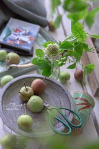 撮りたいものを美しく-女性のためのおしゃれなフォトレッスン - 幸せのテーブル*maison flowertuft-flowers&tablesXphoto