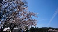 5、6月のイベント出店(^O^)/ - ITZEBOO「いちぶ」 ~Natural Dyeing~