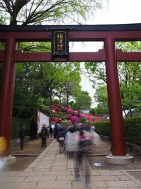 根津神社 - belakangan ini