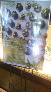ウェスティンホテル東京ザ・テラス抹茶デザートブッフェ - C&B ~ケーキバイキング&ベーグルな日々~